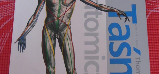 Taśmy Anatomiczne Myers – recenzja