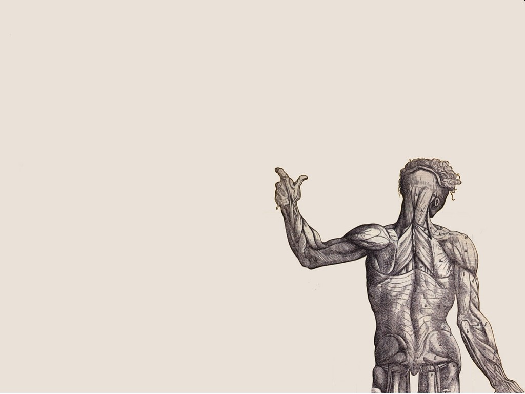 http://wallpaper-kid.com/house-anatomy-wallpaper.htm