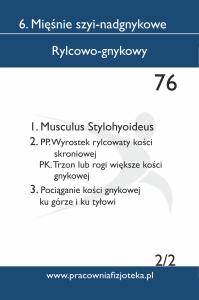 76 rylcowo gnykowy 2