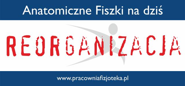 Reorganizacja Fiszek, czyli remontowy dzień 19.