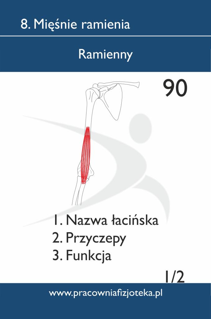 90 Ramienny 1