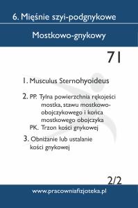 71 Mostkowo-gnykowy 2