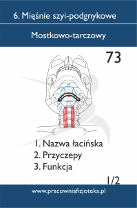 73 mostkowo tarczowy 1