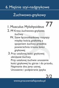 77 żuchwowo gnykowy 2