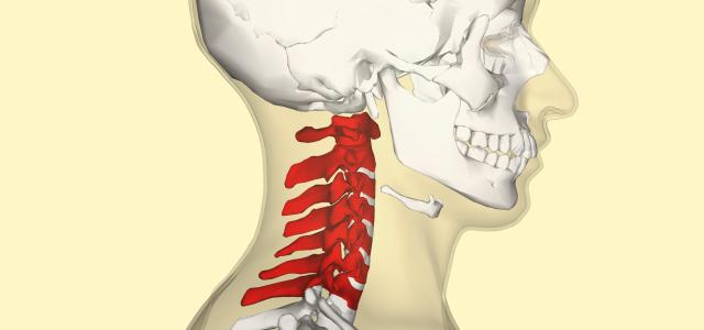 5 faktów na temat kręgów szyjnych