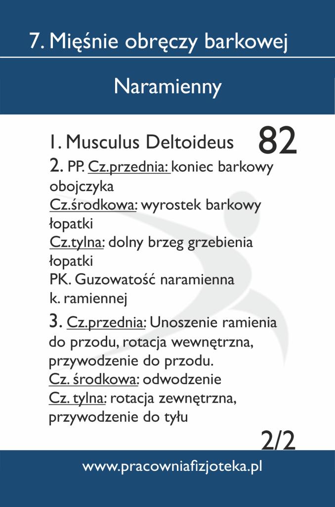 82 Naramienny 2