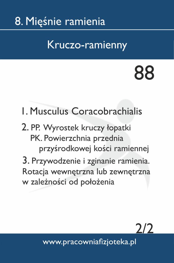 88 Kruczo-ramienny 2