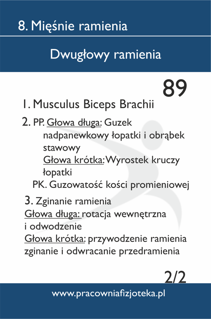 89 Dwugłowy ramienia 2