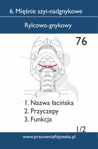 76 rylcowo gnykowy 1